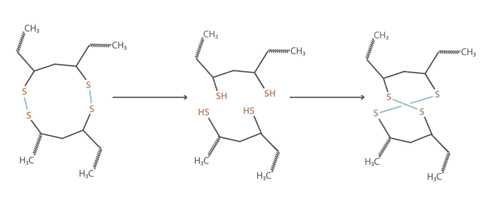 Die dauerwelle chemie